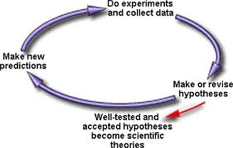 Assumption and hypothesis in research